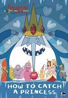 How to Catch a Princess 0843175257 Book Cover