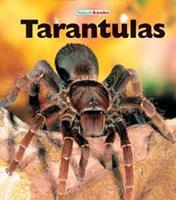 Tarantulas 1567660606 Book Cover