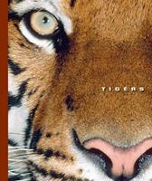Tigers (The World of Mammals) 1592964982 Book Cover