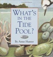 What's in the Tide Pool? 0618015108 Book Cover