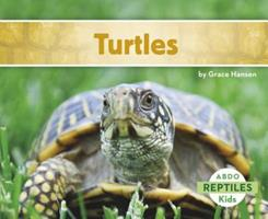 Tortugas / Turtles 1629700622 Book Cover