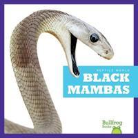 Black Mambas 1620316633 Book Cover