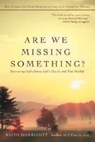 Are We Missing Something?: Discovering God's House, God's Church, and True Worship 0595433928 Book Cover