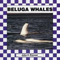 Beluga Whales 1562394770 Book Cover