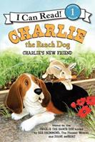 Charlie's New Friend 0062219154 Book Cover