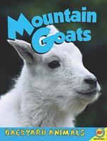 Mountain Goats 1616906235 Book Cover