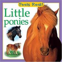 Little Ponies (Feels Real Books) 0764158554 Book Cover