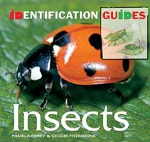 Identification Guide Insects (Identification Guides) 1844519201 Book Cover