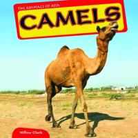 Camels 1448874165 Book Cover