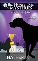 A Secret in Time 0992315344 Book Cover