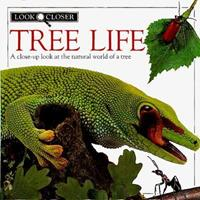 Tree Life 1564581322 Book Cover