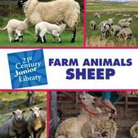 Farm Animals: Sheep 1602795444 Book Cover