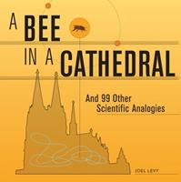 A Bee in a Cathedral: And 99 Other Scientific Analogies 1554079594 Book Cover