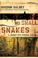 No Small Snakes: A Journey Into Spiritual Warfare 0849919843 Book Cover