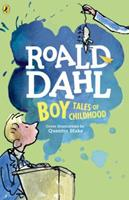 Boy: Tales of Childhood 014241381X Book Cover