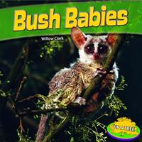 Bush Babies 1448861888 Book Cover