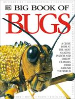 Big Book of Bugs 0789465205 Book Cover