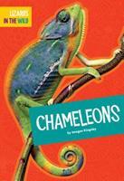 Chameleons 1681515555 Book Cover