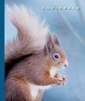 Squirrels 1592965032 Book Cover