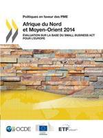 Politiques En Faveur Des Pme Afrique Du Nord Et Moyen-Orient 2014: Evaluation Sur La Base Du Small Business ACT Pour L'Europe 9264221859 Book Cover