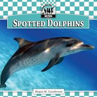 Spotted Dolphins 1616134151 Book Cover