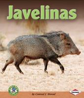 Javelinas 0822578905 Book Cover
