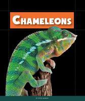 Chameleons 1631437038 Book Cover