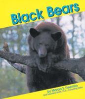 Black Bears 0736800964 Book Cover