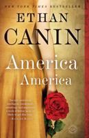 America America: A Novel 0812979893 Book Cover