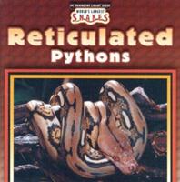 Reticulated Pythons 0836836561 Book Cover