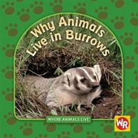 Why Animals Live in Burrows 083688793X Book Cover