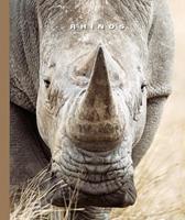 Rhinos 1592965024 Book Cover