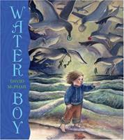 Water Boy 081091784X Book Cover