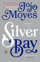 Silver Bay 0143126482 Book Cover