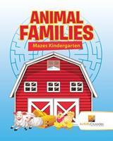 Animal Families: Mazes Kindergarten 0228220254 Book Cover