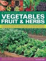 Practical Gardener's Guide to Growing Vegetables, Fruit and Herbs: A Complete How-to Handbook for Gardening for the Table, from Planning and Preparation ... Photographs (Practical Guide to Growing) 1846814618 Book Cover