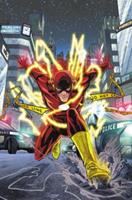 The Flash: A Celebration of 75 Years 1401251781 Book Cover