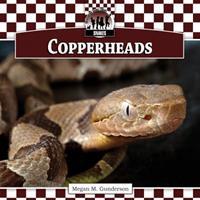 Copperheads 1616134348 Book Cover