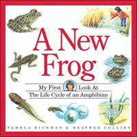 A New Frog : My First Look at the Life Cycle of an Amphibian (My First Look at Nature) 1550746154 Book Cover