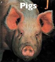 Pigs (Naturebooks) 1567663788 Book Cover