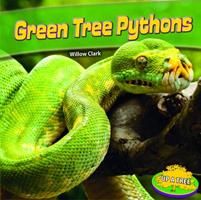 Green Tree Pythons 1448863333 Book Cover