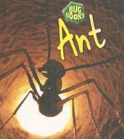 Ant (Bug Book) 1575724561 Book Cover