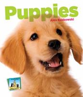 Puppies 1617838403 Book Cover