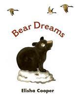 Bear Dreams 0060874287 Book Cover
