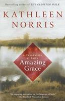 Amazing Grace: A Vocabulary of Faith 0783802978 Book Cover