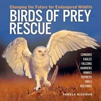 Birds of Prey Rescue: Changing the Future for Endangered Wildlife 1554071445 Book Cover