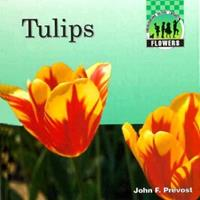 Tulips 1562396129 Book Cover