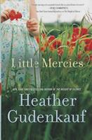 Little Mercies 0778316335 Book Cover