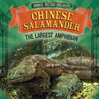 Chinese Salamander: The Largest Amphibian 1725308681 Book Cover
