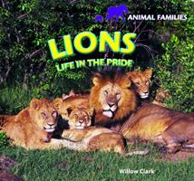 Lions: Life in the Pride 1448831407 Book Cover